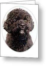 Portugese Water Dog 305 Greeting Card