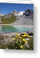 Postcard From Alpes Greeting Card