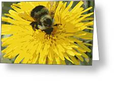 Posterized Bumble Bee Greeting Card