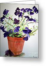 Pot Of Flowers One Greeting Card