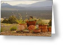 Pots And Vista Greeting Card