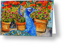 Potted Peacock Greeting Card