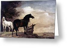Potter: Horses, 1649 Greeting Card