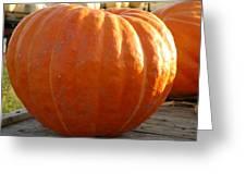 Pounds Of Pumpkin  Fun Greeting Card