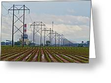 Power And Plants I  Greeting Card