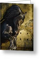 Power House Horse Greeting Card
