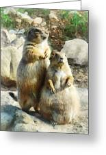 Prairie Dog Formal Portrait Greeting Card