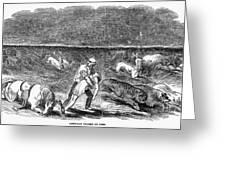 Prairie Fire, 1844 Greeting Card