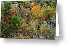 Prarie Hollow Gorge In Autumn Greeting Card