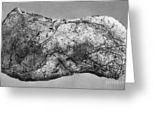 Prehistory: Engraving Greeting Card