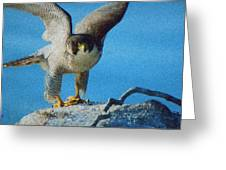 Preparing To Fly Off Greeting Card