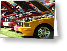Pretty Mustangs In A Row Greeting Card