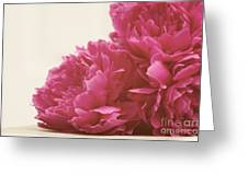 Pretty Pink Peonies Greeting Card by Kim Fearheiley
