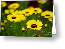 Pretty Yellow Greeting Card