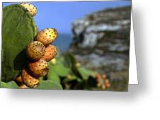 Prickly Pears Greeting Card