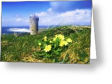 Primrose Flower In Foreground Greeting Card