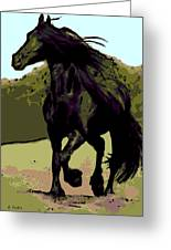Prince Of Equus Greeting Card