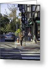 Princeton Afternoon - New Jersey Greeting Card
