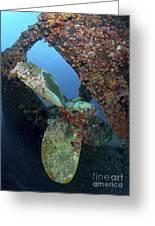 Propeller Of Hilma Hooker Shipwreck Greeting Card