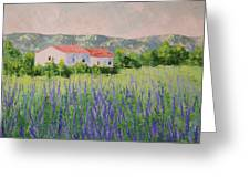 Provence Lavender Volonne Greeting Card