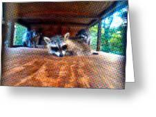 Psycodelic Furries Greeting Card