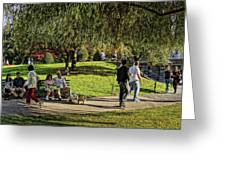 Public Garden 11 Greeting Card