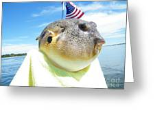 Puffer One Greeting Card by Laurence Oliver