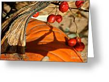Pumpkin Berries Greeting Card
