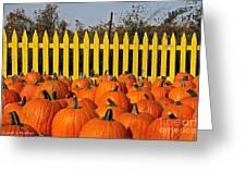 Pumpkin Corral Greeting Card