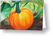 Pumpkin In The Garden Greeting Card