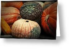 Pumpkin Mix Greeting Card