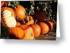 Pumpkin Palooza Greeting Card