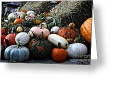 Pumpkin Piles Greeting Card