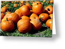 Pumpkin Pileup Greeting Card