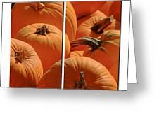 Pumpkin Pumpkin Greeting Card