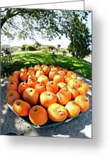 Pumpkin Round Greeting Card