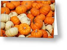 Pumpkin Squash Greeting Card