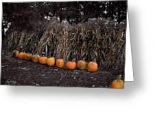 Pumpkins And Cornstalks Greeting Card