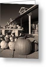 Pumpkins At The Farm Market October Greeting Card