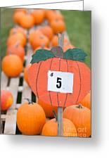 Pumpkins For Sale II Greeting Card