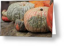 Pumpkins Galore V1 Greeting Card