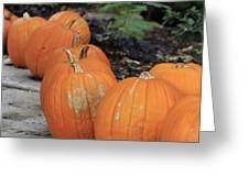 Pumpkins Galore V2 Greeting Card