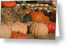 Pumpkins Pumpkins Everywhere Greeting Card