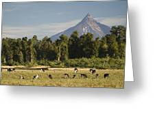 Puntiagudo Volcano In The Background Greeting Card