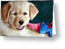Pup And Toy Greeting Card