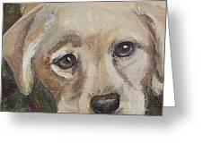 Pup Greeting Card