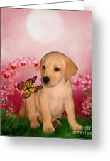 Puppy Innocence Greeting Card
