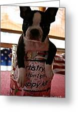 Puppy Kit Greeting Card
