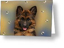 Puppy With Bubbles Greeting Card