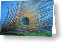 Purdy As A Peacock Greeting Card